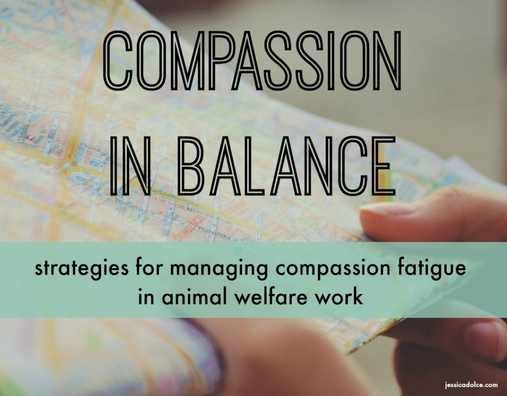 map compassion fatigue